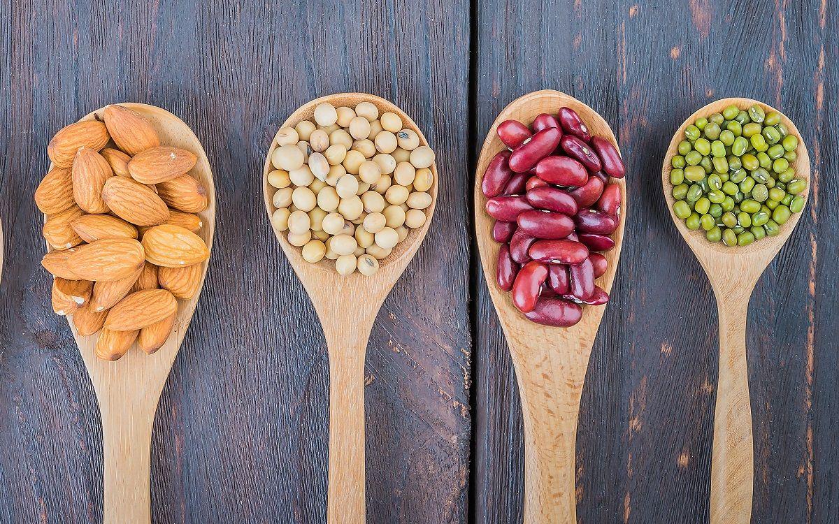Alimentos ricos en proteína vegetal