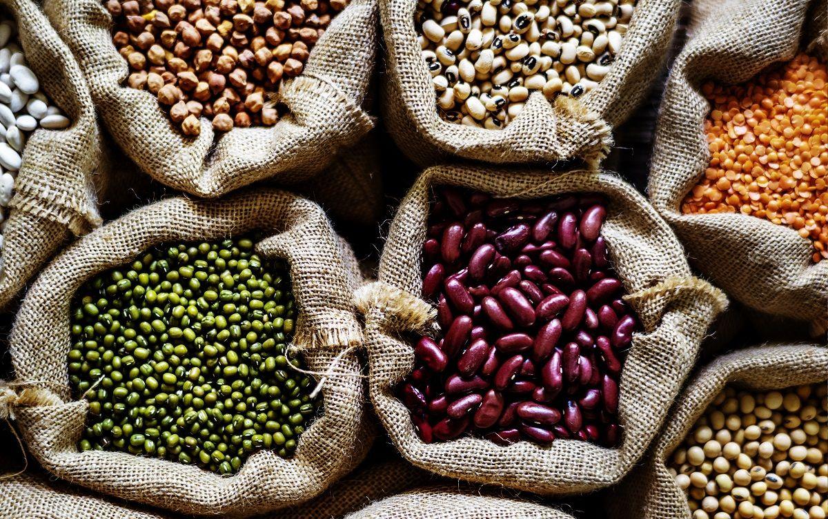 Hierro: importancia de su consumo y principales fuentes alimentarias