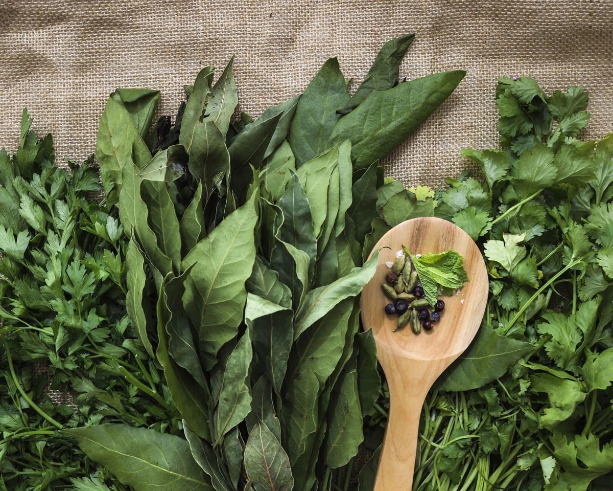 Ocho vegetales verdes que debes incluir en tu alimentación
