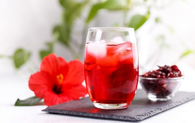 Cold refreshing hibiscus iced ted in a glass with red flower, copy space horizontal