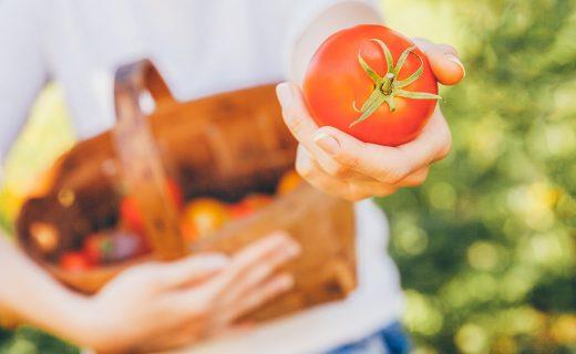 ¿Los alimentos orgánicos son más nutritivos y saludables?