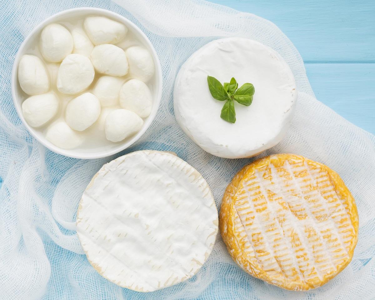 Comer queso, ¿bueno o malo para la salud?